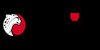 Playtika_Logo_100p_b