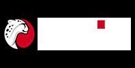 Playtika_Logo_100p_w